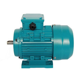 MS Series Three Phase Asynchronous Motor Aluminium Housing 0.25KW 4 Pole MS711-4